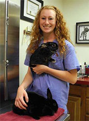 Angelica S. - Certified Veterinary Technician at Landisville Animal Hospital - Landisville PA